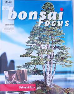Bonsai-Schwerpunkt - Englisch Nr.144