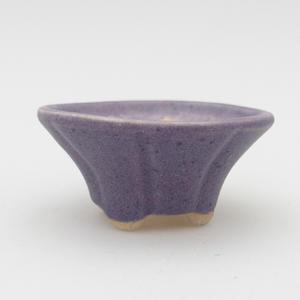 Mini Bonsai Schüssel