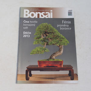 Bonsai-Magazin - CBA 2013-4