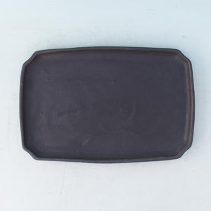 Bonsai Tablett mit Wasser H 07p