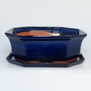 Bonsai Schale Tablett mit Wasser H14 +