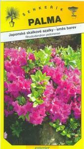 Japanische Azaleen Steingarten - Rhododendron yedonense