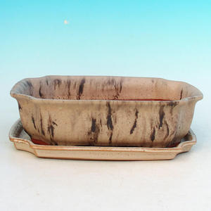 Bonsai Schüssel Tablett H03 - 16,5 x 11,5 x 5 cm, Tablett 16,5 x 11,5 x 1 cm, beige - 16,5 x 11,5 x 5 cm, Tablett 16,5 x 11,5 x 1 cm