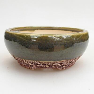 Bonsai im Freien - Hainbuche - Carpinus betulus - 1