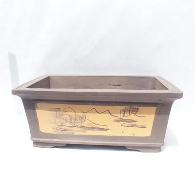 Bonsai-Schüssel 61 x 47 x 26 cm - 1
