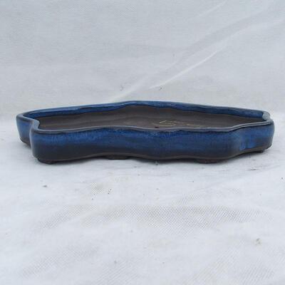Bonsaischale 31 x 19 x 3,5 cm, Farbe blau - 1