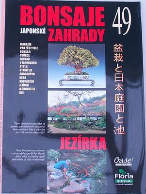 Bonsai und Japanischer Garten Nr.49 - 1