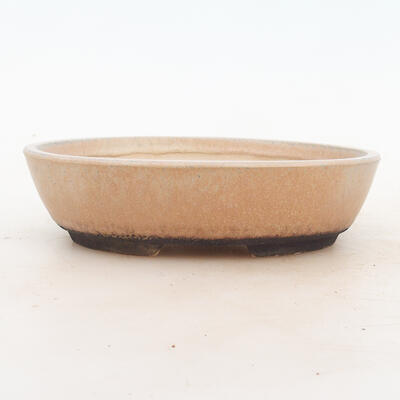 Bonsai-Schale 18 x 13 x 5 cm, beige Farbe - 1