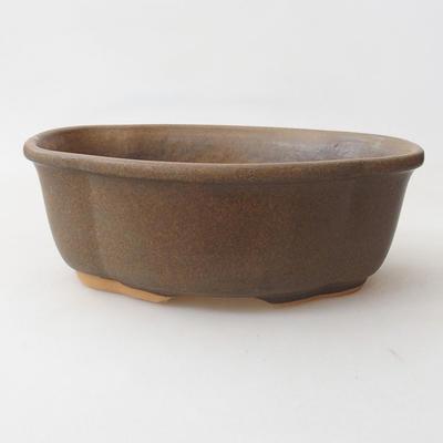 Bonsai-Schale H 75 - 19 x 14 x 7 cm - 1