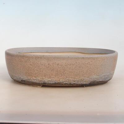 Bonsai-Schale 31 x 24 x 8,5 cm, grau-beige Farbe - 1
