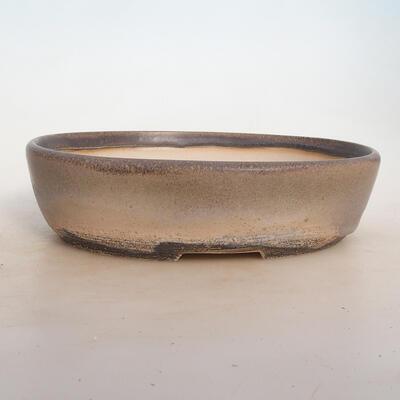 Bonsai-Schale 25 x 19 x 6,5 cm, grau-beige Farbe - 1