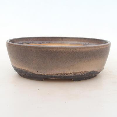 Bonsai-Schale 22 x 16,5 x 6 cm, grau-beige Farbe - 1