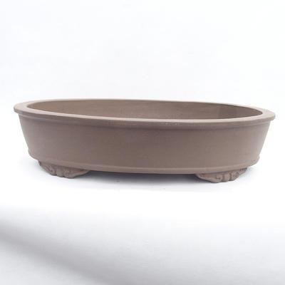 Bonsai-Schüssel 59 x 43 x 13 cm - 1