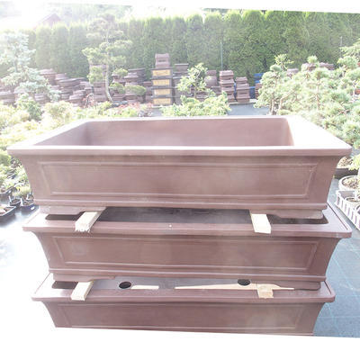 Bonsai-Schüssel 117 x 80 x 26 cm - 1