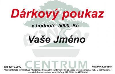 Gutschein 5000 CZK