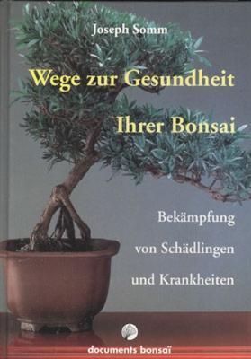 Wege zur Gesundheit Inher Bonsai - Josef Som4