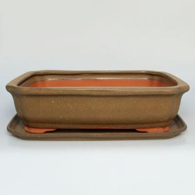 Bonsai-Schale und Tablett mit Wasser H 20 - 1