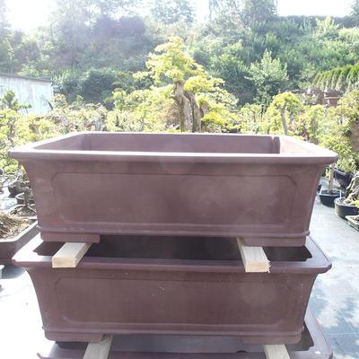 Bonsai-Schale 75 x 60 x 23 cm - 1