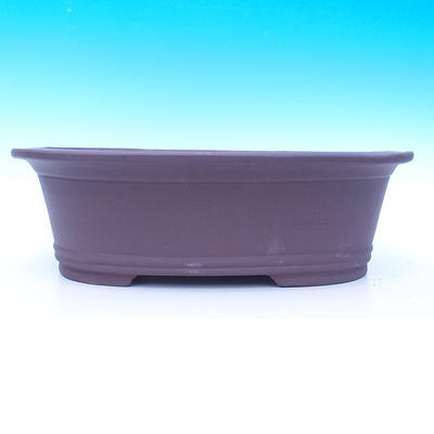 Bonsai-Schüssel 44 x 34 x 14 cm - 2