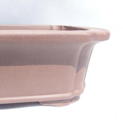 Bonsai-Schüssel 35 x 29 x 11 cm - 2