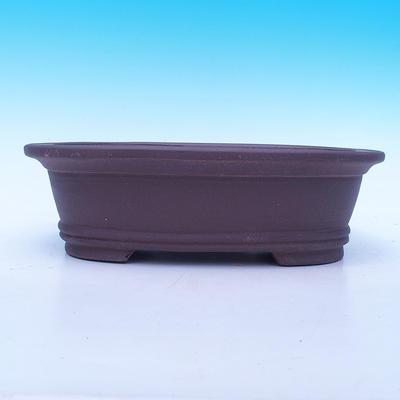 Bonsai-Schüssel 29 x 21 x 9 cm - 2