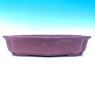 Bonsai-Schüssel 59 x 47 x 11 - 2