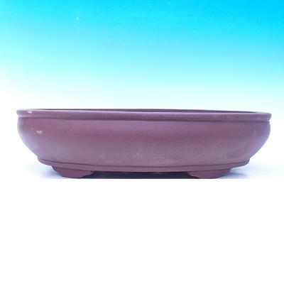 Bonsai-Schüssel 50 x 37 x 13 cm - 2