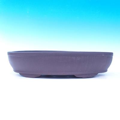 Bonsai-Schüssel 50 x 35 x 10 cm - 2