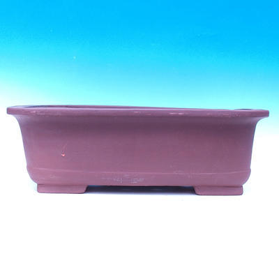 Bonsai-Schüssel 59 x 42 x 19 cm - 2