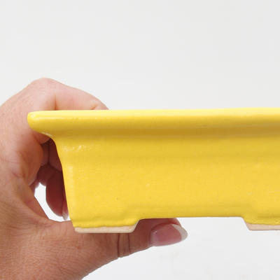 Keramik Bonsai Schüssel 11,5 x 9 x 4 cm, gelbe Farbe - 2