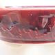 Keramik Bonsai Schüssel 12 x 12 x 5 cm, burgunder Farbe - 2/3