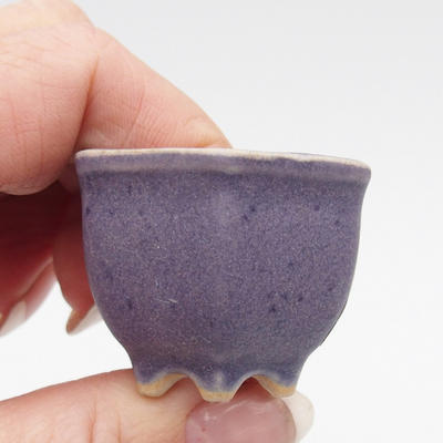 Mini Bonsai Schüssel - 2
