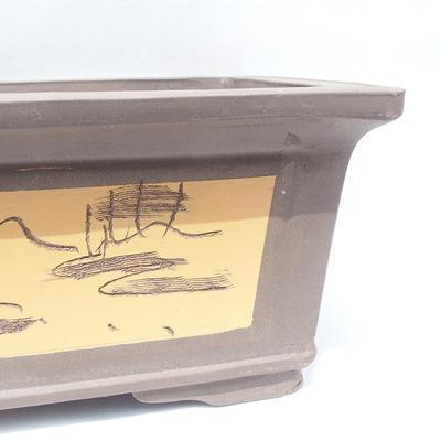 Bonsai-Schüssel 61 x 47 x 26 cm - 2
