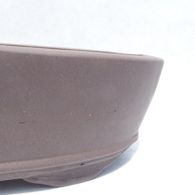 Bonsai-Schüssel 31 x 20 x 7 cm - 2