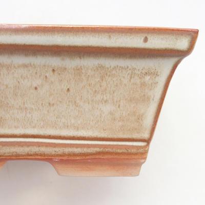Bonsai-Schale 14,5 x 12 x 7 cm, braun-beige Farbe - 2