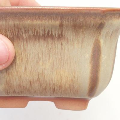 Bonsai-Schale 11 x 11 x 6,5 cm, braun-beige Farbe - 2