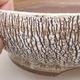 Keramische Bonsai-Schale 16,5 x 16,5 x 6 cm, weiße Farbe - 2/4