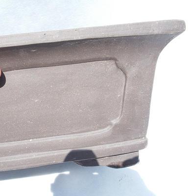 Bonsai-Schale 46 x 34 x 18 x cm - 2