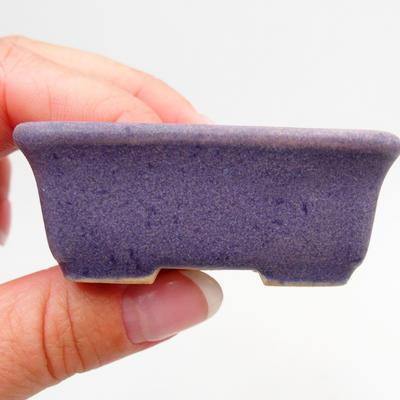 Mini-Bonsaischale 6 x 3,5 x 2,5 cm, Farbe violett - 2