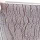 Keramische Bonsai-Schale 14,5 x 14,5 x 12,5 cm, Farbe schwarz - 2/3