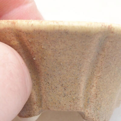 Mini-Bonsai-Schale 5,5 x 5,5 x 2,5 cm, beige Farbe - 2