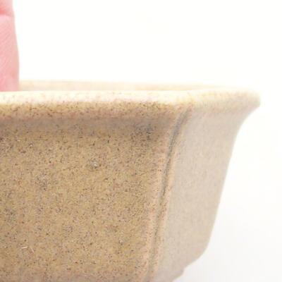 Mini Bonsai Schüssel 5 x 4 x 2,5 cm, beige Farbe - 2