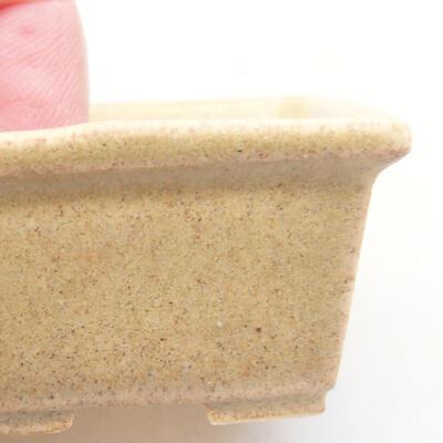 Mini Bonsai Schüssel 4 x 3 x 2 cm, beige Farbe - 2