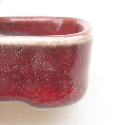 Mini Bonsai Schüssel 4 x 3 x 1,5 cm, Farbe rot - 2