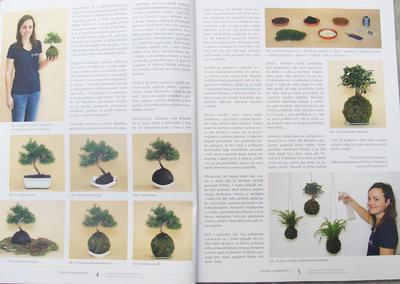 Bonsai und Japanischer Garten Nr.52 - 2
