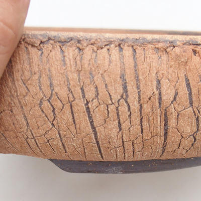 Keramische Bonsai-Schale 25 x 25 x 6 cm, rissige Farbe - 2