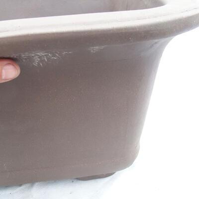 Bonsaischale 60 x 60 x 33 cm, graue Farbe - 2