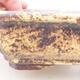 Keramische Bonsai-Schale 17 x 13 x 4,5 cm, Farbe braun-gelb - 2/3