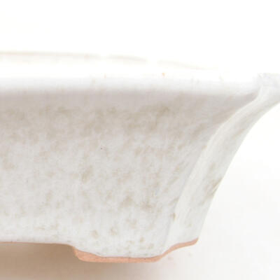 Keramische Bonsai-Schale 12,5 x 10 x 4 cm, weiße Farbe - 2