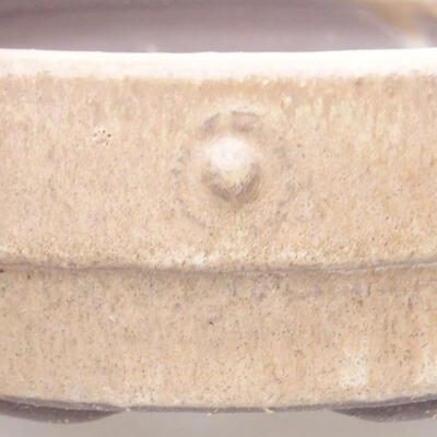 Keramische Bonsai-Schale 17 x 17 x 4,5 cm, beige Farbe - 2